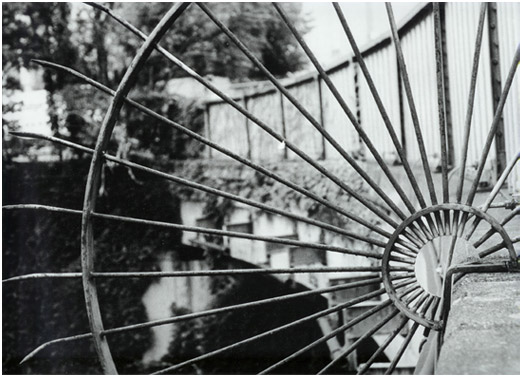 Martha Huizenga, Spokes Photo